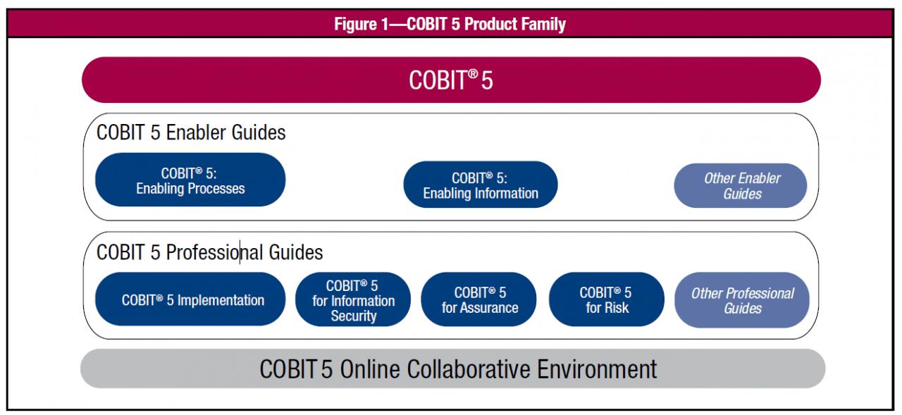 COBIT Framework