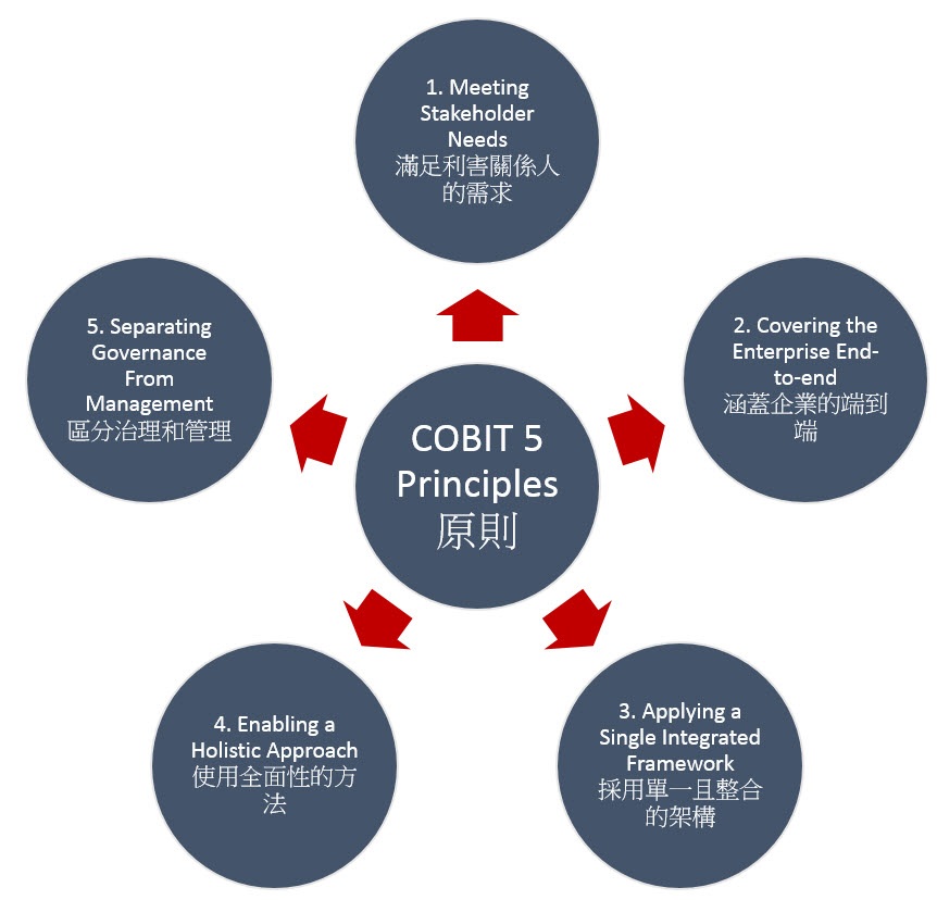 COBIT Priciples